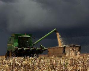 Chuvas limitam avanço da colheita da safra de soja e milho do Brasil (Crédito: Reprodução)