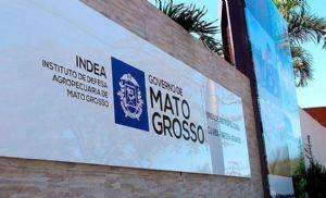 Indea investe em tecnologia e fortalece serviço para erradicação da aftosa em Mato Grosso (Crédito: Reprodução:)