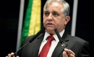 Senado debate projeto que trata da Política de Desenvolvimento Sustentável do Cerrado (Crédito: Reprodução)
