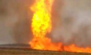Salles inspeciona áreas em Mato Grosso atingidas pelo fogo (Crédito: Reprodução)