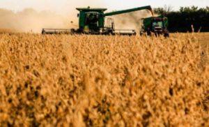 Atraso ante a média histórica: colheita da soja começa em Mato Grosso, afirma Imea (Crédito: Reprodução)