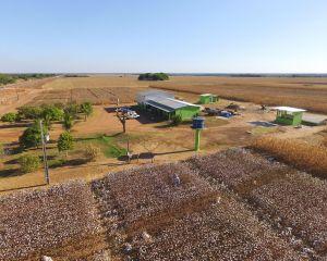 Programa de estágio para os cursos Técnico agrícola e Agronomia é aberto em Confresa (Crédito: Repórter Agro/Tiago Seiffert)