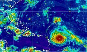 Soja: chuvas serão intensas em parte do Sul e Sudeste neste começo de semana (Crédito: Reprodução:)