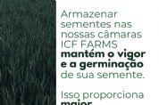 Tecnologia inovadora para armazenagem de sementes chega no Vale do Araguaia