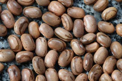 Feijão tem tendência de preços firmes com quebra de safra