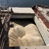 Exportações de soja em bom ritmo no início de abril
