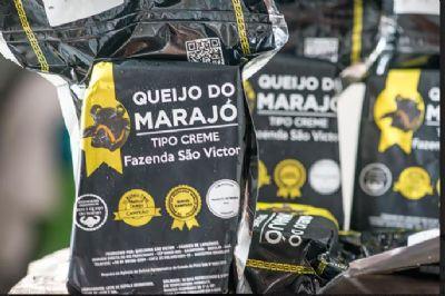 Produtores do queijo do Marajó estão com capacitação para investirem mais em produtividade e expansão