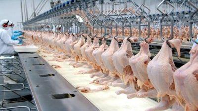 Exportações de carne de frango dos EUA aumentam menos de meio por cento em 12 meses
