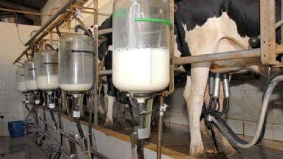 Imea prevê aumento sobre preço do leite em MT
