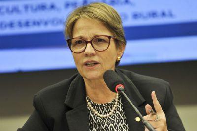 Governo seguirá com política de liberar agrotóxicos, diz ministra da Agricultura